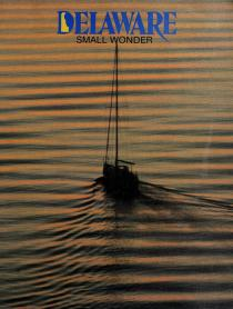 Cover of: Delaware, small wonder by Kevin Fleming